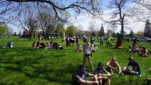 Cemeteries: The Modern Day Urban Park